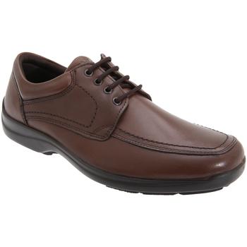 Chaussures Homme Derbies Imac Panel Marron
