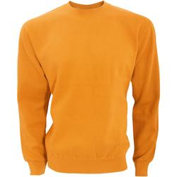 Vêtements Homme Sweats Sg SG20 Orange vif