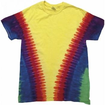 Vêtements Enfant T-shirts manches courtes Colortone TD05B Arc-en-ciel
