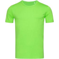 Vêtements Homme T-shirts manches courtes Stedman Stars Morgan Vert