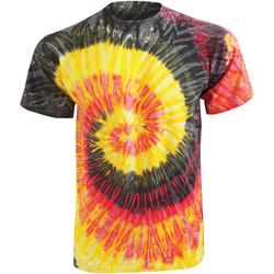 Vêtements Femme T-shirts manches courtes Colortone Rainbow Kingston