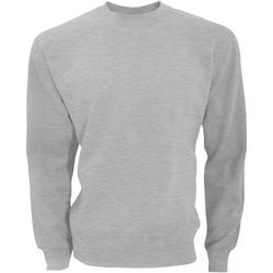 Vêtements Homme Sweats Sg SG20 Gris clair