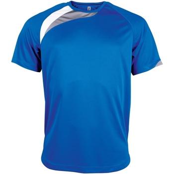 Vêtements Homme T-shirts manches courtes Kariban Proact Proact Bleu roi/Blanc/Gris