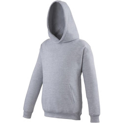 Vêtements Enfant Sweats Awdis Hooded Gris