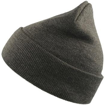 Accessoires textile Bonnets Atlantis Beanie Gris