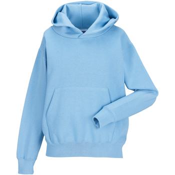 Vêtements Enfant Sweats Jerzees Schoolgear Hooded Bleu ciel