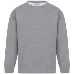 Vêtements Homme Sweats Absolute Apparel Sterling Gris pâle