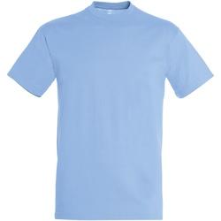Vêtements Homme T-shirts manches courtes Sols Regent Bleu ciel