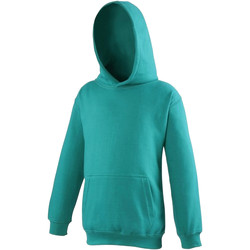 Vêtements Enfant Sweats Awdis Hooded Jade