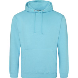 Vêtements Sweats Awdis Hooded Turquoise