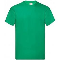Vêtements Homme T-shirts manches courtes Fruit Of The Loom Original Vert