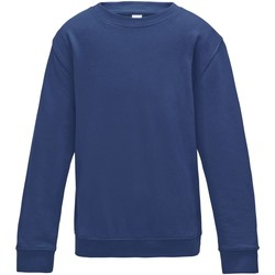 Vêtements Enfant Sweats Awdis JH30J Bleu roi