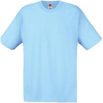 Vêtements Homme T-shirts manches courtes Fruit Of The Loom Original Bleu ciel