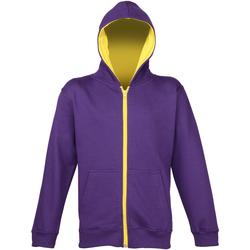 Vêtements Enfant Sweats Awdis Hooded Violet/Jaune soleil