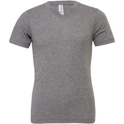 Vêtements Homme T-shirts manches courtes Bella + Canvas Canvas Gris