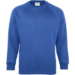 Vêtements Enfant Sweats Maddins Coloursure Bleu océan