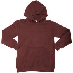 Vêtements Enfant Sweats Sg Hooded Bordeaux