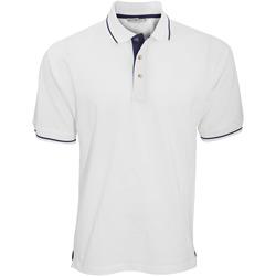 Vêtements Homme Polos manches courtes Kustom Kit Mellion Blanc/Bleu marine