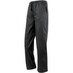Vêtements Pantalons fluides / Sarouels Premier  Noir