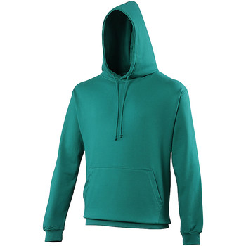 Vêtements Sweats Awdis Hooded Vert émeraude