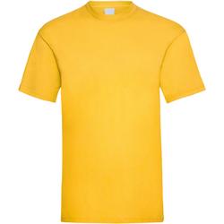 Vêtements Homme T-shirts manches courtes Universal Textiles 61036 Or