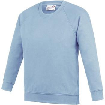 Vêtements Enfant Sweats Awdis Academy Bleu ciel