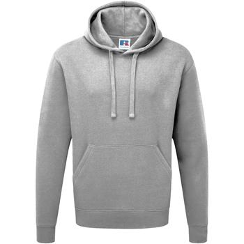 Vêtements Homme Sweats Russell Sweatshirt à capuche BC1498 Gris clair