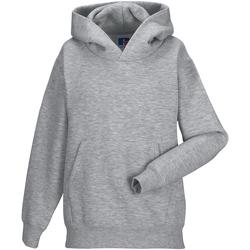 Vêtements Enfant Sweats Jerzees Schoolgear Hooded Gris clair