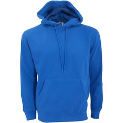 Vêtements Homme Sweats Sg Hooded Bleu roi