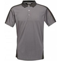 Vêtements Homme Polos manches courtes Regatta  Gris / noir