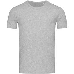 Vêtements Homme T-shirts manches courtes Stedman Stars Morgan Gris