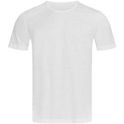 Vêtements Homme T-shirts manches courtes Stedman Stars Shawn Blanc
