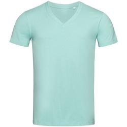 Vêtements Homme T-shirts manches courtes Stedman Stars  Bleu ciel