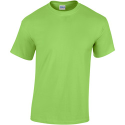 Vêtements Enfant T-shirts manches courtes Gildan 5000B Citron vert