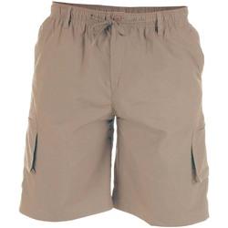 Vêtements Homme Shorts / Bermudas Duke Cargo Beige
