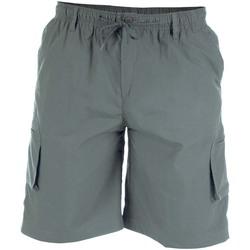 Vêtements Homme Shorts / Bermudas Duke Cargo Gris