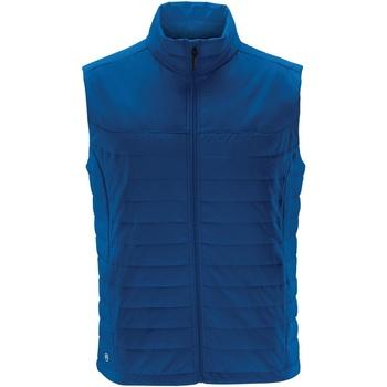Vêtements Homme Gilets / Cardigans Stormtech Quilted Azur