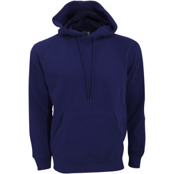 Vêtements Homme Sweats Sg Hooded Bleu marine