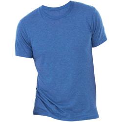 Vêtements Homme T-shirts manches courtes Bella + Canvas Triblend Bleu roi