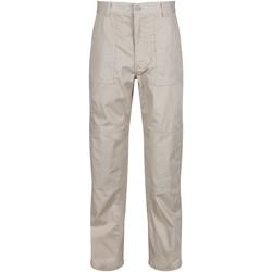 Vêtements Homme Pantalons cargo Regatta TRJ330R Beige