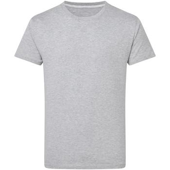 Vêtements Homme T-shirts manches courtes Sg Perfect Gris