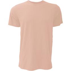 Vêtements Homme T-shirts manches courtes Bella + Canvas Jersey Pêche chinée