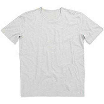 Vêtements Homme T-shirts manches courtes Stedman Stars Shawn Gris pâle