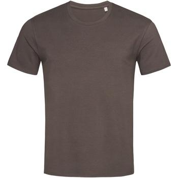 Vêtements Homme T-shirts manches courtes Stedman  Marron foncé