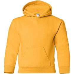 Vêtements Enfant Sweats Gildan Hooded Or