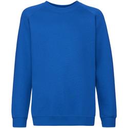 Vêtements Enfant Sweats Fruit Of The Loom 62033 Bleu royal