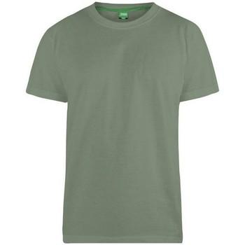 Vêtements Homme T-shirts manches courtes Duke Flyers-2 Kaki