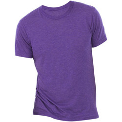 Vêtements Homme T-shirts manches courtes Bella + Canvas Triblend Violet