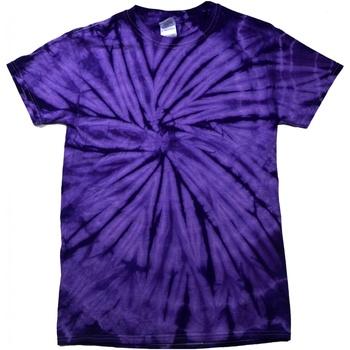 Vêtements T-shirts manches courtes Colortone Tonal Violet
