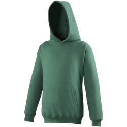 Vêtements Enfant Sweats Awdis Hooded Vert bouteille
